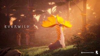کارگردان خلاق بازی Everwild استدیو Rare را ترککرد